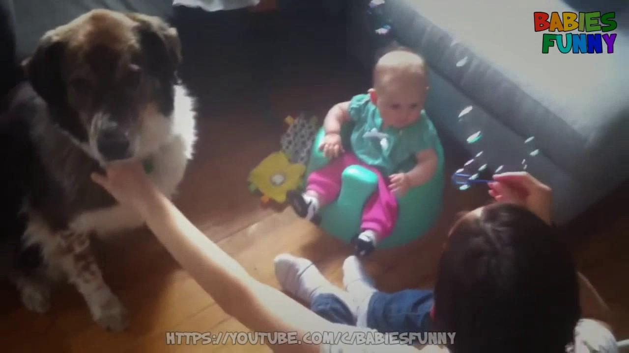 面白 – おもしろ – 泡を食べる犬でヒステリックに笑う面白い赤ちゃん – 面白い赤ちゃんのビデオ2016