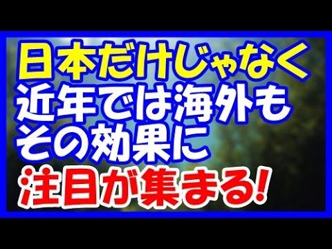 【海外の反応】『日本人しか食せなかったよね?』日本で昔から常食されてきた食品。近年では多収性と健康効果から海外でも海藻に注目が集まる!【海外視点】