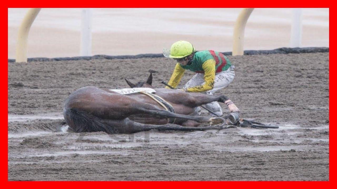 藤田菜七子 落馬するも起き上がれない騎乗馬への行動に感動の涙が止まらない【レース動画あり】