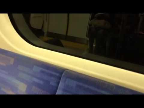 電車で移動するハト!オチで笑える!