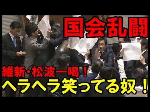 【国会乱闘】TPP特別委員会 民進党大暴れ!出たプラカード!維新・松波「そこ!ヘラヘラ笑ってる奴!」と一喝!