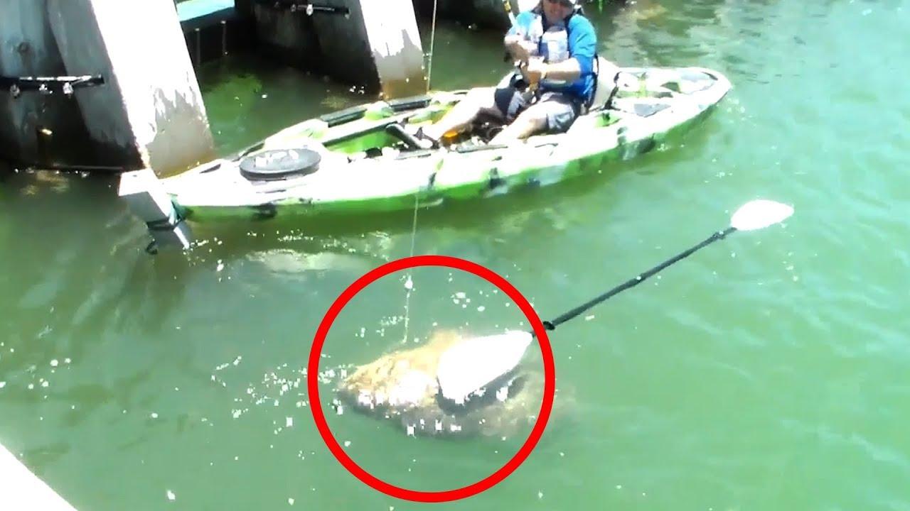 【衝撃】信じられない生物が釣れた。世界のびっくり映像まとめ【Video Pizza】