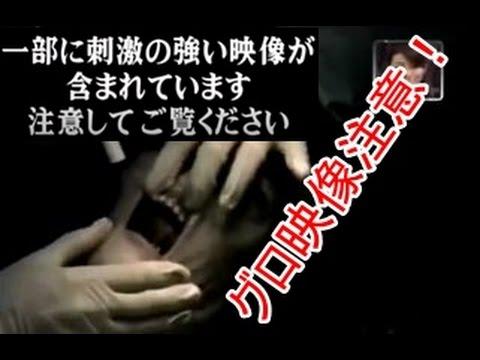 【ドラレコ】最新DQN キチガイ 未確認生物の解剖動画!!