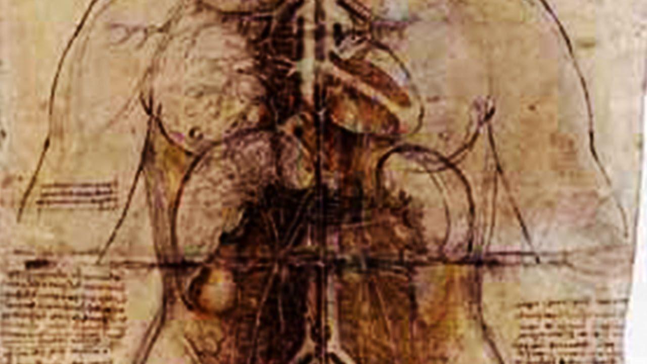 都市伝説-恐怖の人体解剖の心得 【閲覧注意】