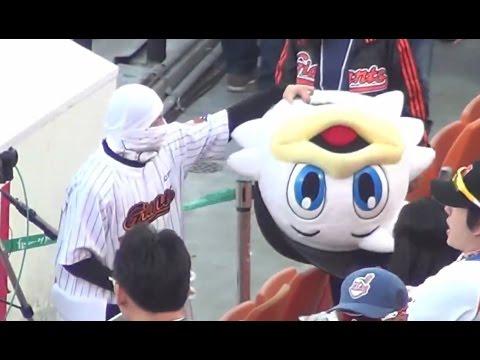 【衝撃映像】 中の人は存在していたwww パフォーマンスがスゴイ!千葉ロッテのマスコットキャラクター、マーくん、ズーちゃんではないwww funny giants baseball mascot