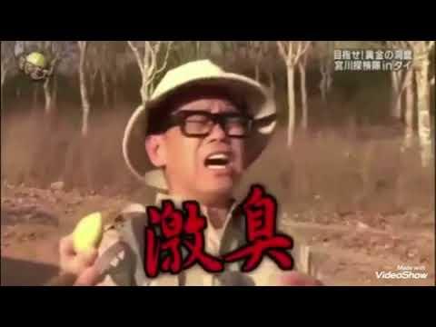 【イッテQ】宮川大輔が好きになる面白い動画集