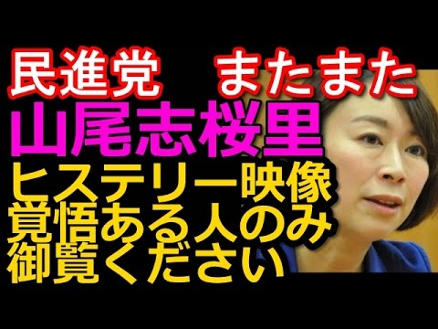 【聞き苦しいシーンあるため、閲覧注意】民進党・山尾志桜里議員がまたまたやりたい放題で全力ヒステリーを披露。激しい剣幕、こんなのおかしいを連呼。【テロ等準備罪法案より】