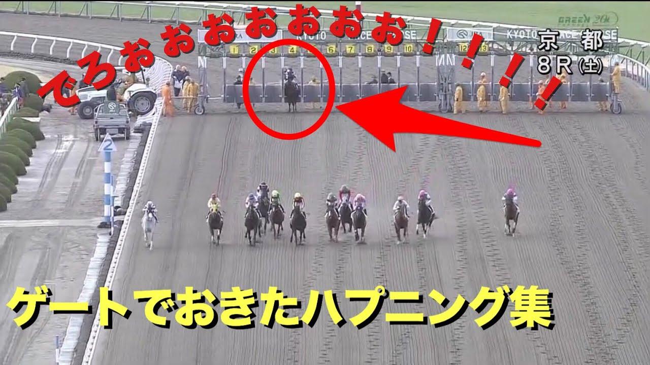 競馬のゲートで大暴れ、スタートしない、やる気のない馬たち