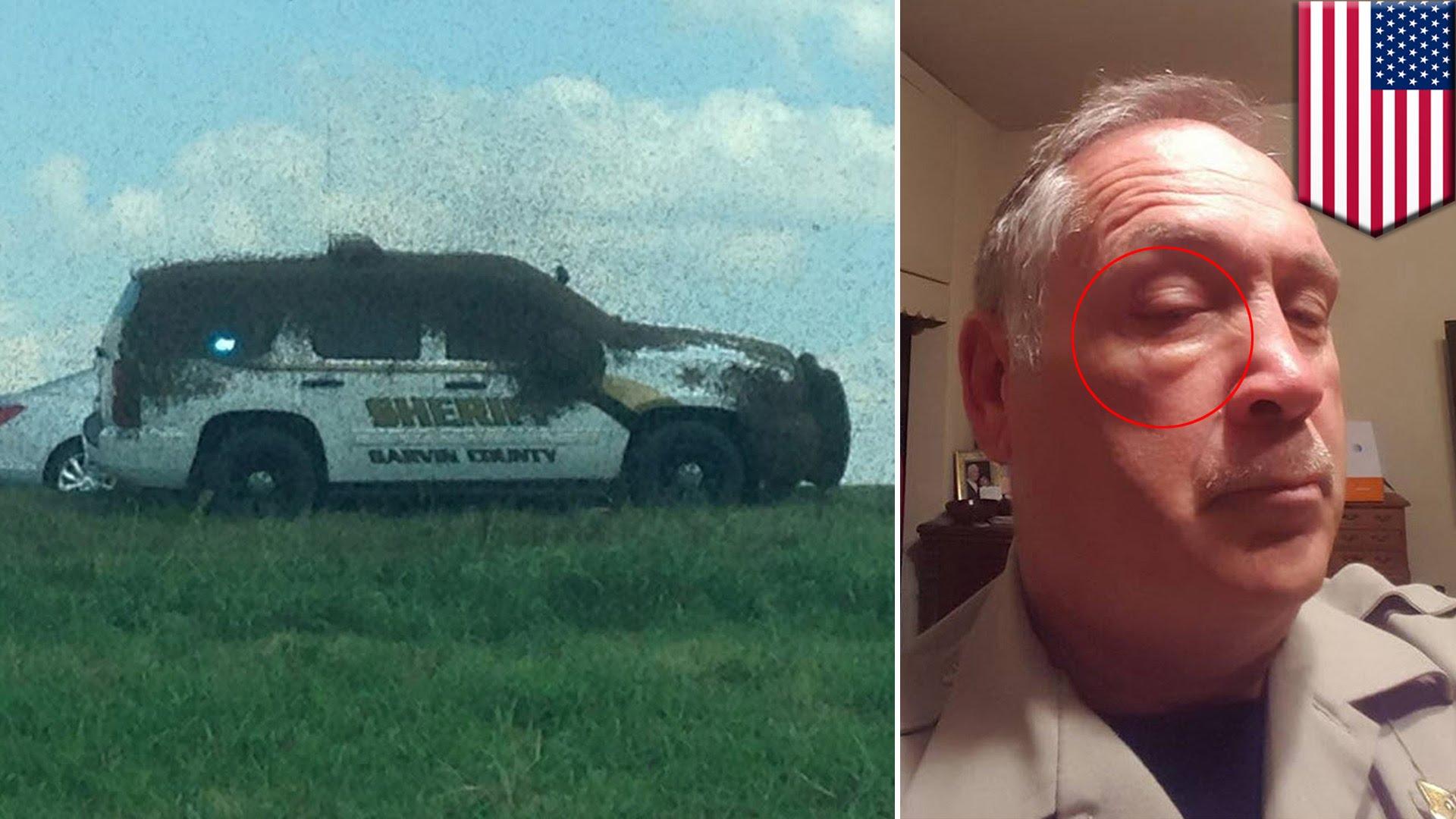 ハチの大群に保安官ピンチ!米トラック横転事故の写真が話題