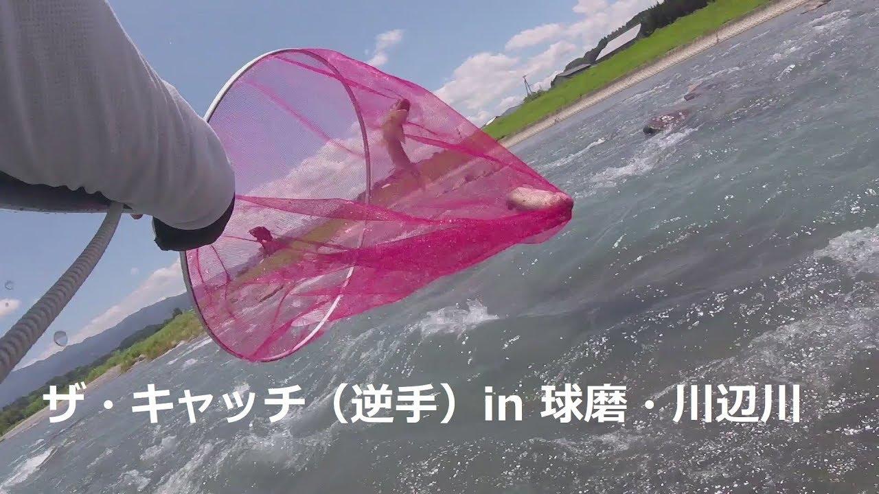 [つりよか] 九州釣り2&3日目 球磨川(赤鉄下合流部)・川辺川(柳瀬橋下) Kumagawa Ayu fishing crazy cutting of device