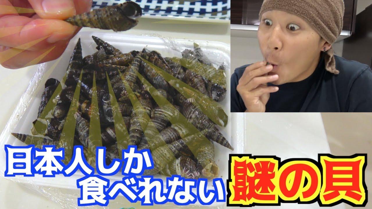 日本人の能力でしか食べれない謎の貝を食べてみる!!