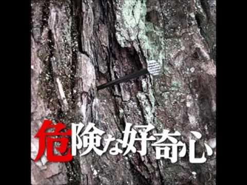 危険な好奇心~中年女の呪い【定番名作・怖い話機械朗読】オチに仰天!!