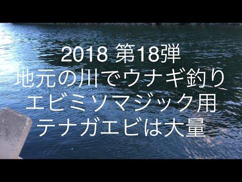 2018 第18弾 地元の川でウナギ釣り。エビミソマジック用のテナガエビ大量捕獲。