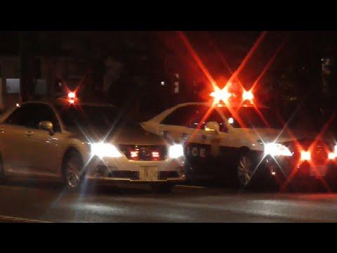 マジ格好良すぎ!暴走族の追悼集会に合わせて覆面パトカーと交パが大集結!交通機動隊の痺れる緊急走行2連発!Police car in Japan