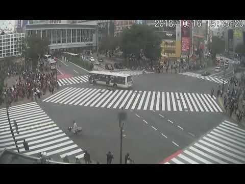 【日本の事故】スクランブル交差点で起きたバスの下敷きになってしまう事故映像