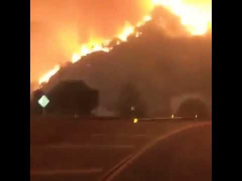 コレが現実の山火事からの脱出‼ スリルが異常事態