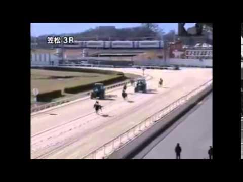 【衝撃の結末】笠松競馬で起きた前代未聞の競走不成立【これはひどい】