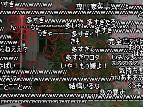 戦慄!恐怖の心霊写真(ニコニココメ付)