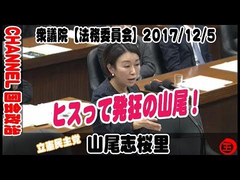 山尾志桜里がキーキーヒステリー発症!国会中継2017年12月5日