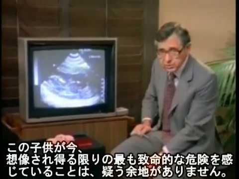 沈黙の叫び 3/5 (妊娠中絶)