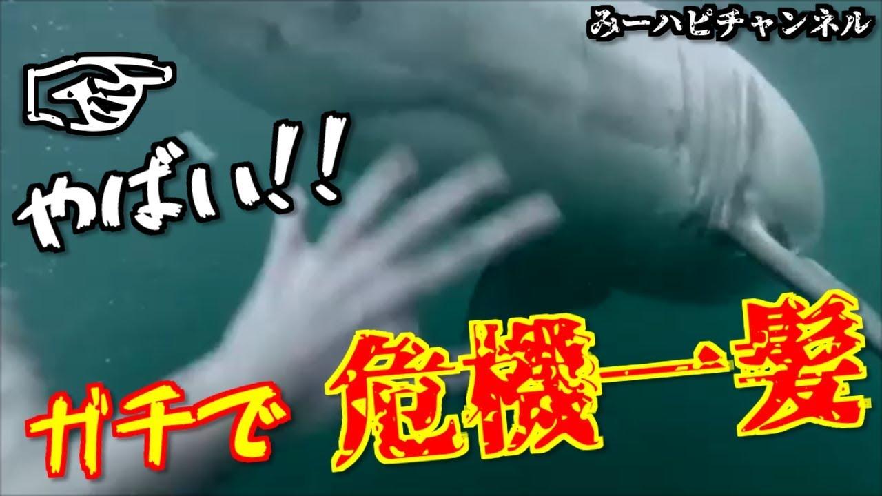 【衝撃】危機一髪!!!! まじで冷や冷やする映像集!【アクシデント】