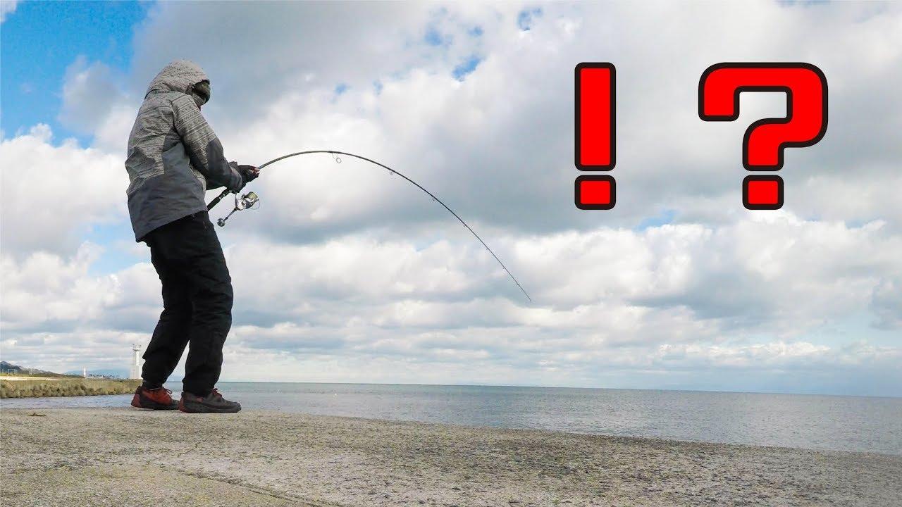 【衝撃】堤防からエビを落としたら「とんでもない魚」が掛かった!