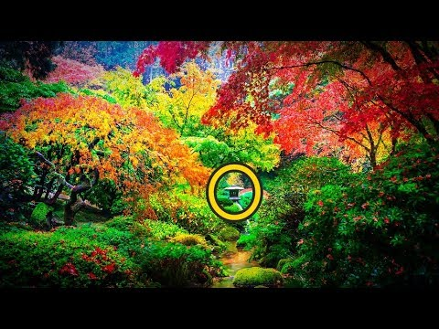 【海外の反応】衝撃!日本庭園がまさかアメリカに!?荘厳すぎる美しさに世界が感動!外国人「米国にこんなところが?!」「なんてファンタジックな場所だ!」びっくり!【すごい日本】