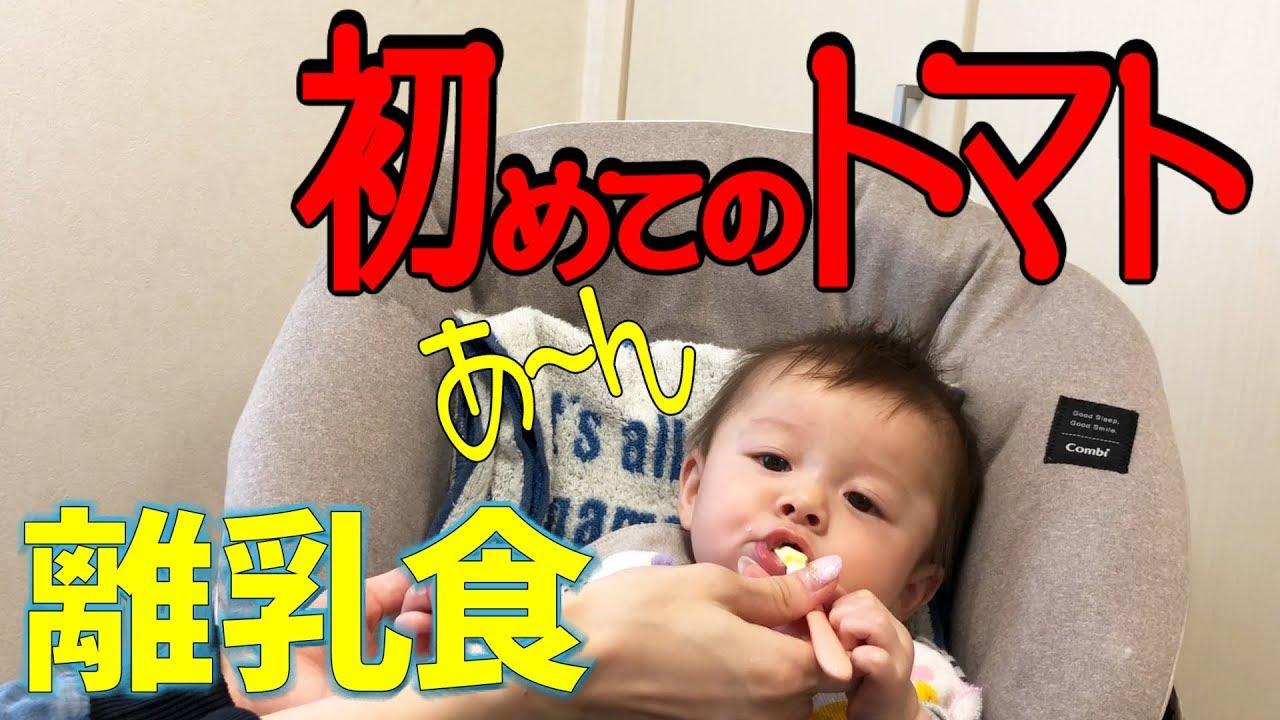 赤ちゃん しぃしぃ 離乳食 初めてのトマト!タンパク質も始めました!【いおりくんTV 日常と休日】