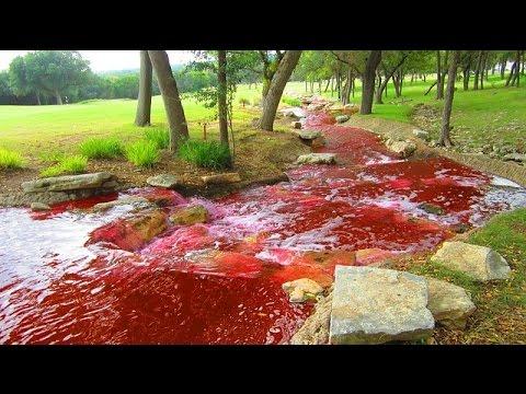 シベリアの赤い川【おそロシア】【閲覧注意】世界で最も危険な恐ろしい場所 ロシア 世界が震えた!死ぬほどつらいことがあったらとりあえずこの動画を見ればいい
