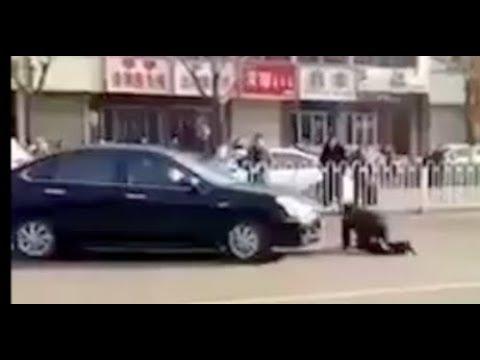 【Twitterで話題】中国の当たり屋がおもしろすぎるww いや車動いてないよww