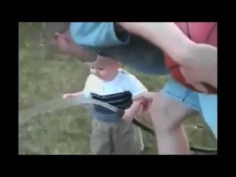世界のおもしろ動画① ゴリラがリンゴを投げ返してきた!