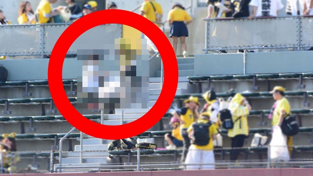 試合に負けた阪神タイガース。試合後、ファンの行動に驚きの光景が!