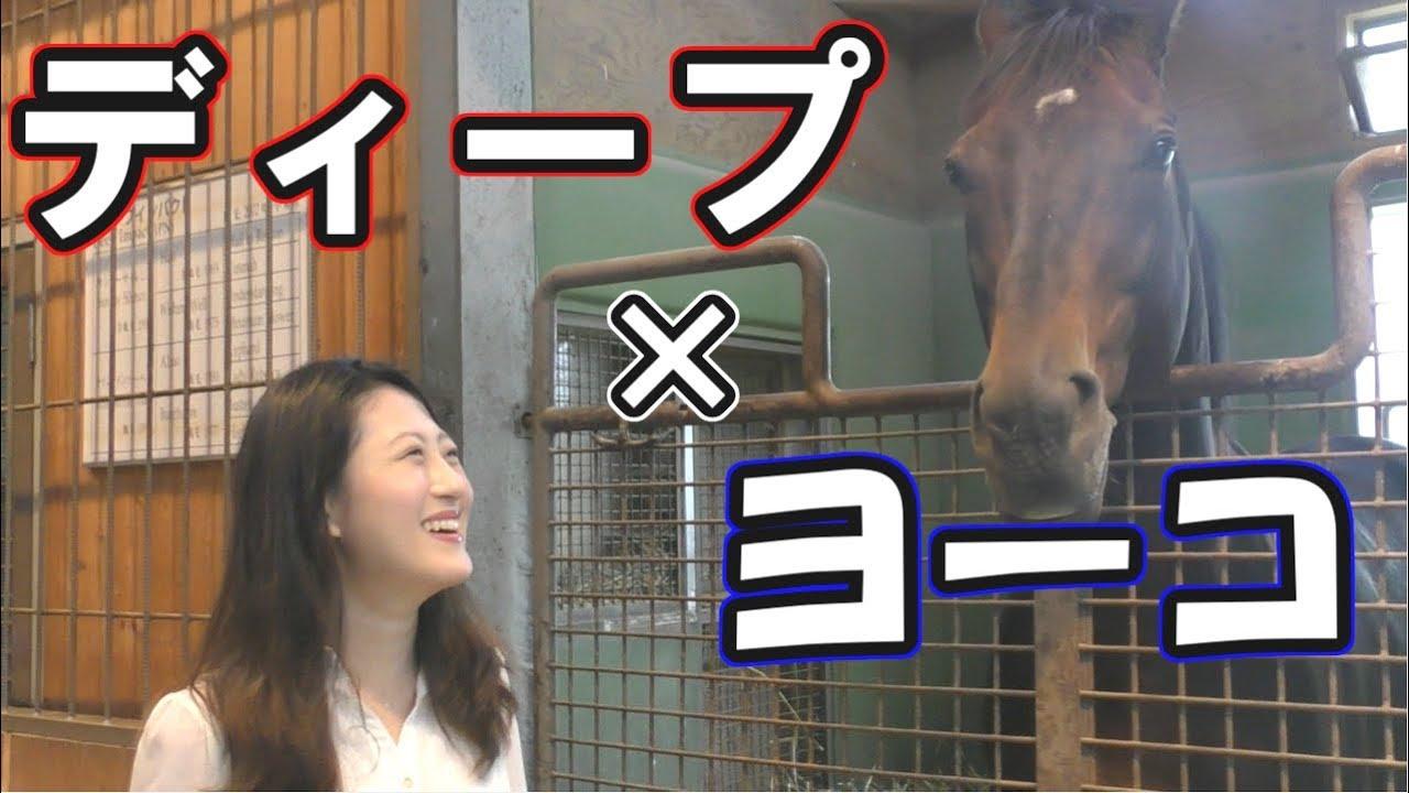 【競馬】今年もディープインパクトに会いに行く♪ (動画の後半に超貴重なシーンあり!)