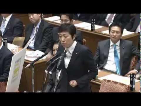 安倍総理と日本をおとしめたい辻◯清美が公開処刑されるwww