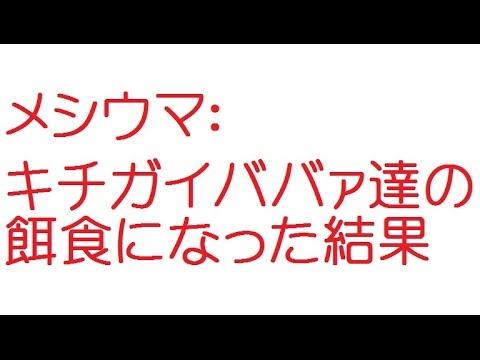 メシウマ:キチガイババァ達の餌食になった結果【2ch】