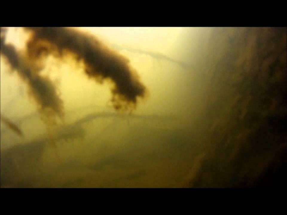 驚愕映像、バス釣り有名ポイント千葉県印旛新川GOPRO HD水中撮影