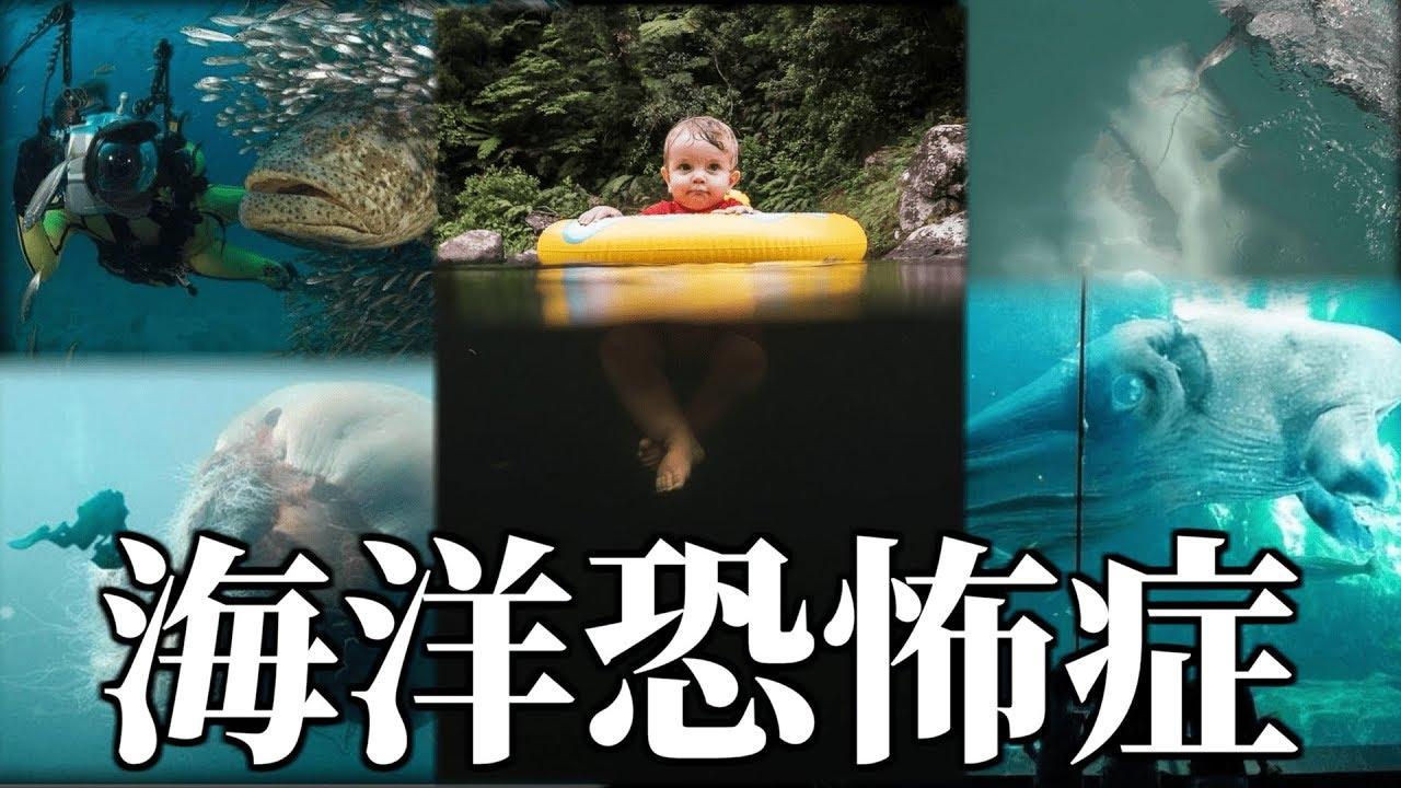 【閲覧注意】海洋恐怖症の俺と怖い水中の画像見ようぜ