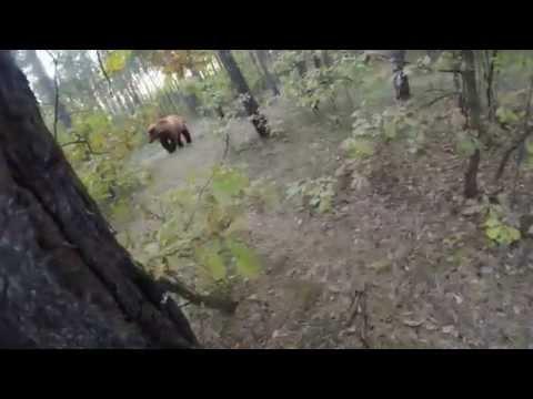 恐怖!熊に追われる動画