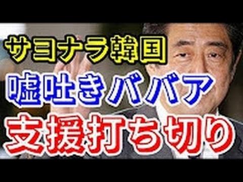 【韓国崩壊】ついに日本政府が韓国の「嘘吐きババア軍団」の支援を打ち切り!!サヨナラ韓国人www