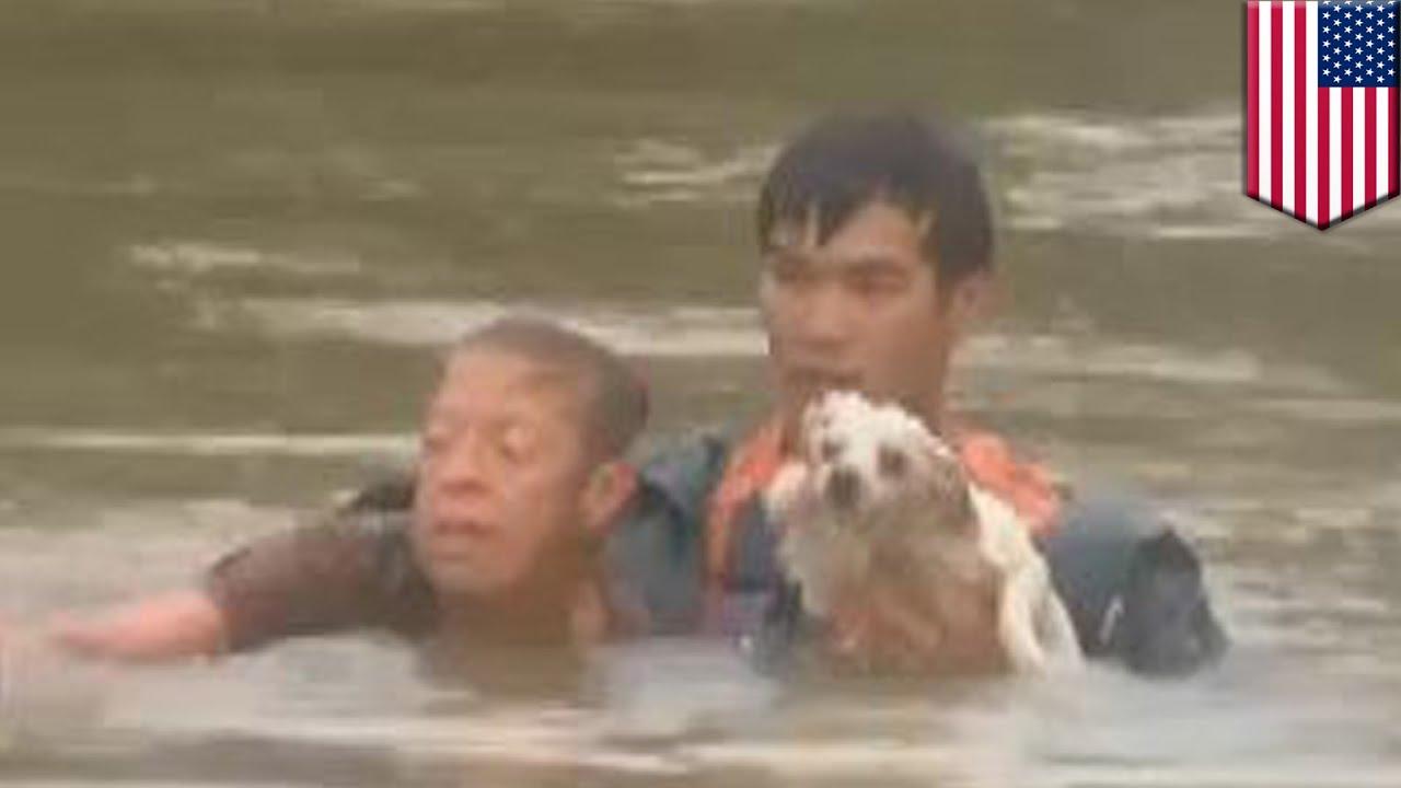 危機一髪!水没した車から女性と犬を救出