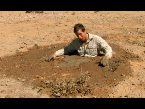 流砂から脱出する方法  | サバイバルゲーム #ディスカバリーチャンネル