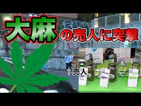 【ガチ喧嘩】Twitterで大麻を売っている売人に実際に会ってみたら喧嘩勃発!?