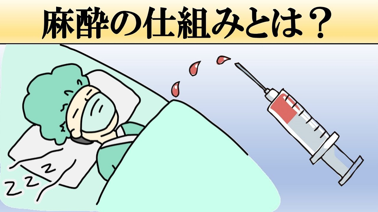 【手術】麻酔が効く仕組みとは?【痛くない理由】