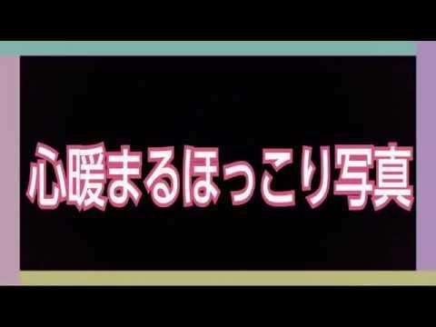 カラオケで見つけた奇跡のおもしろ動画★心暖まるほっこり写真[253]