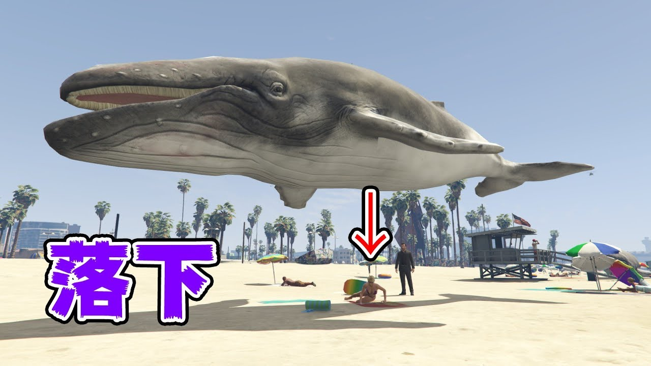 【GTA5】空からクジラを落として市民を潰す!