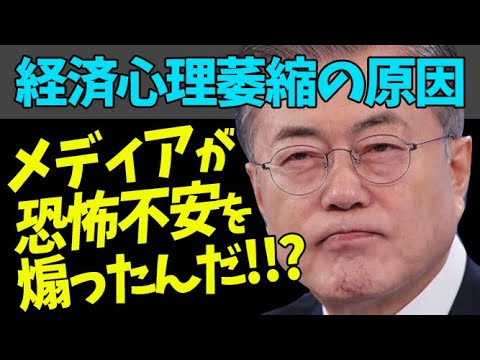 😠メディアのせいで恐怖が膨らんだ?!【韓国 ニュース】【韓国 反応】【韓国 経済】