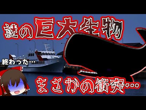 【ゆっくり解説】謎の巨大生物が船と衝突!?80人がケガをする大惨事に…