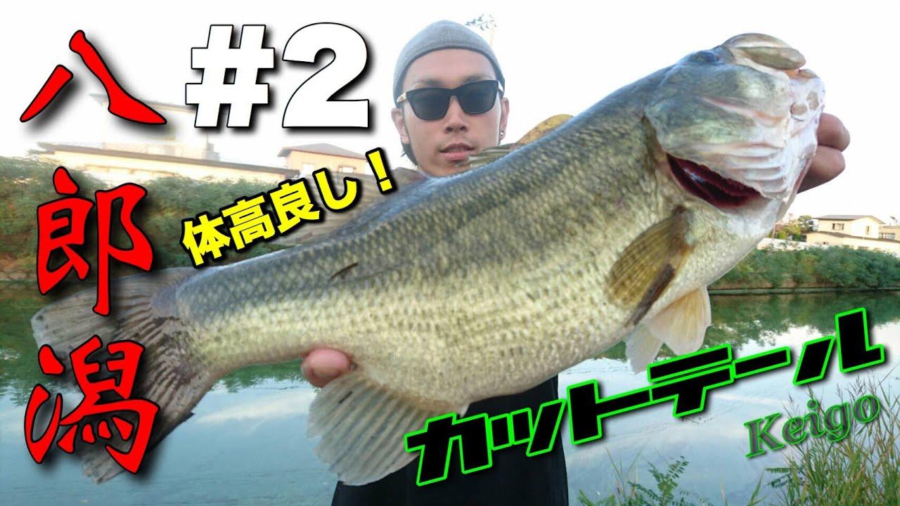 【バス釣り】八郎潟!一瞬で釣る地元アングラーに唖然!