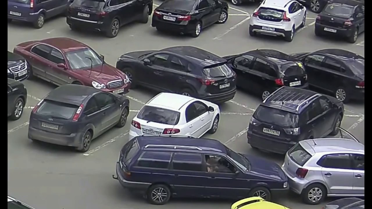 【アホ】世界のドライバー 女性編