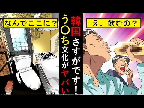 (ドン引き)韓国不潔すぎのクソ(笑)文化!あなたはこの衝撃を受け止められる?(アニメでわかる)